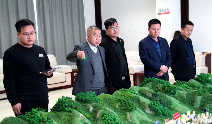 上海月星集团来陆港考察项目事宜